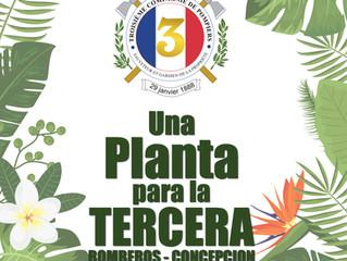Campaña plantas para nuestro cuartel
