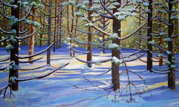 Afternoon Winter Light