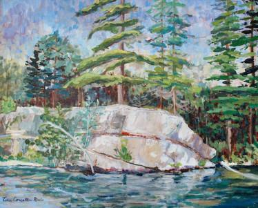 Haliburton Pines