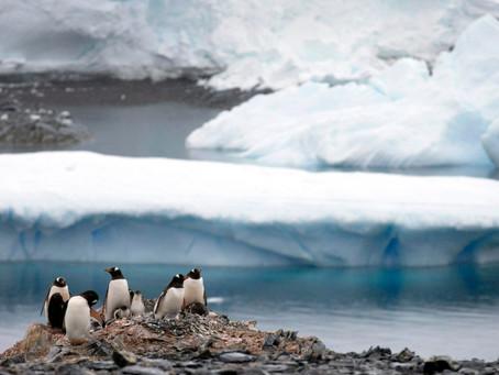 南極で新型コロナ大規模感染