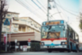 DSC_8975.jpg