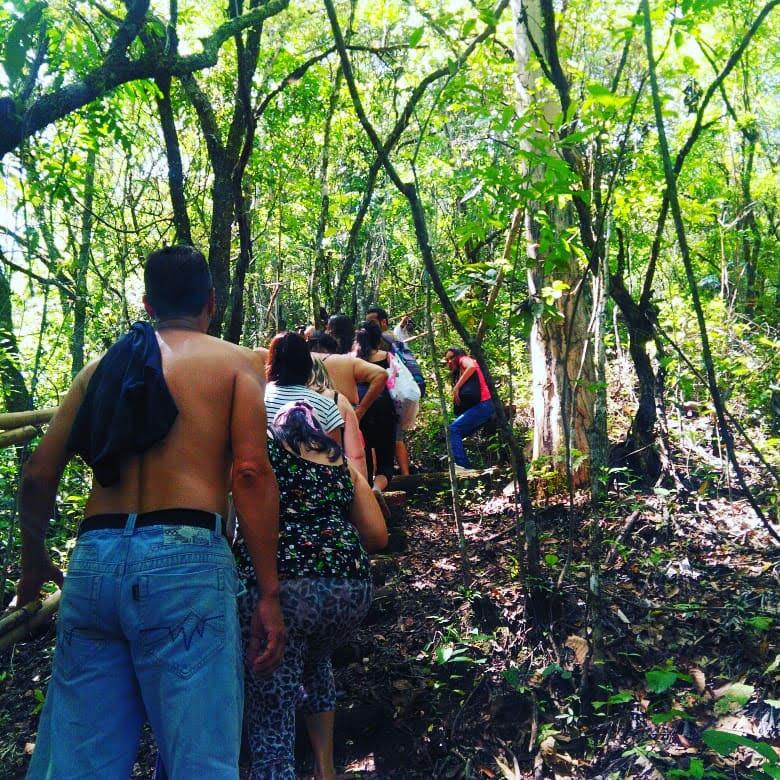 Trilha da Cachoeira do Chalé