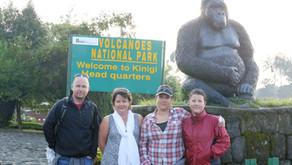 Gorilla adventures Rwanda