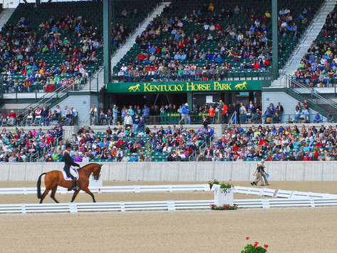 Love Horses?  Equitana USA is for you!