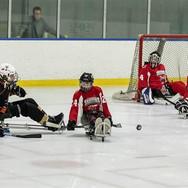 wisconsin-skeeters-hockey-game.jpg