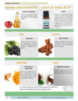 Revista 400 Remedios Naturales