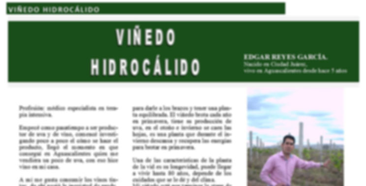 Edgar Reyes García #Viñedo Revista 400 @400revista  #Revista400