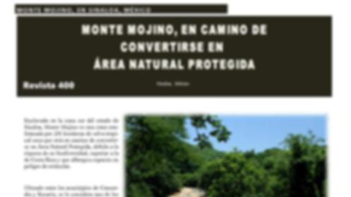 Monte Mojino #Revista400 #DesarrolloSustentable  #Sinaloa