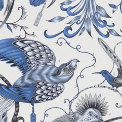 Audubon_Blue_W0099_01.jpg