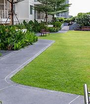jardín en la azotea moderna con pathwayi
