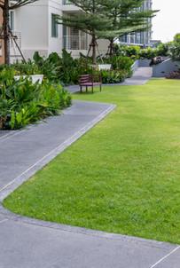 Gartenplanung und -gestaltung