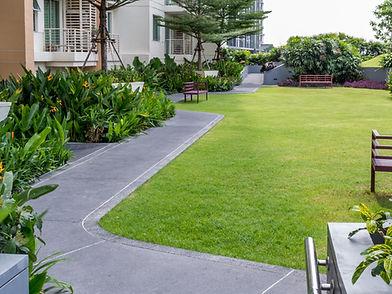 jardin sur le toit moderne avec pathwayi
