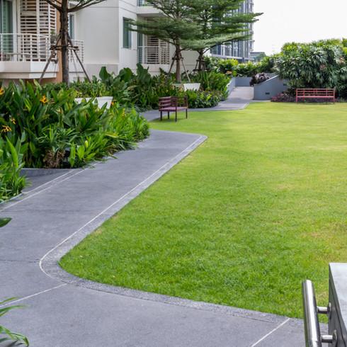 Aménagement d'extérieur   Réfection de Terrain & jardin