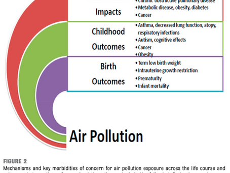 Air pollution is a Preventable Danger to Health