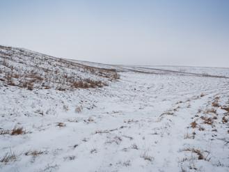 Старооскольский край зимой