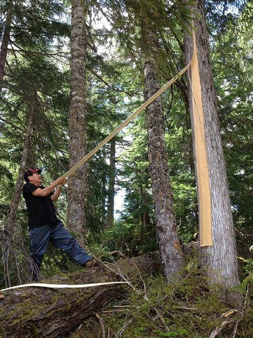 Cedar Weaving Weekend Retreat