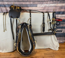 Fully restored and refurbished set of trade harness.