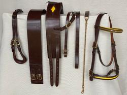 Trade Show Stallion Set