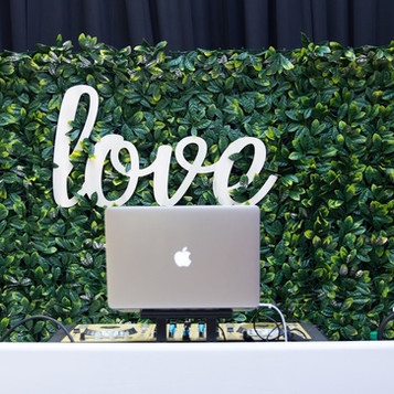 Our Greenery Wall makes a great DJ Booth Backdrop!