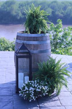 Natural Winery Wedding