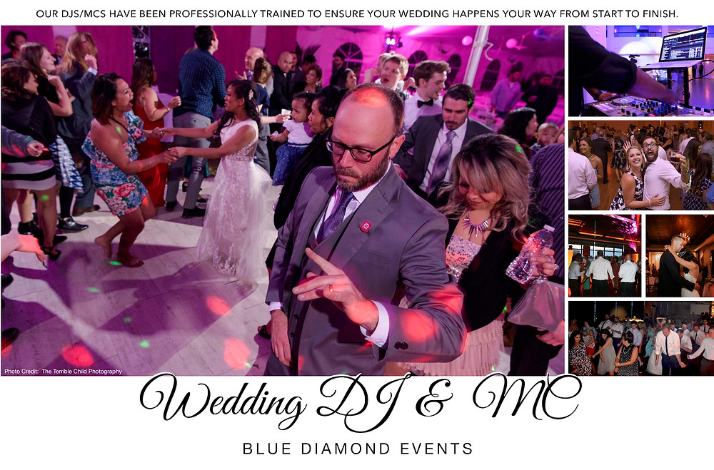 DJ, MC, Weddings, Wedding, Columbia, MO, Missouri, Blue Diamond Events, Ceremony Audio, Reception Music, Bilingual, Wedding Vendors