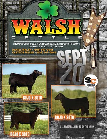 WALSH AD 2020.png