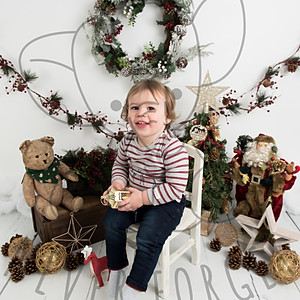 Finley Christmas Mini Session