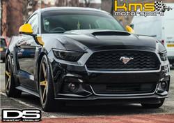 Eric Lloyd @Kms Motorsport