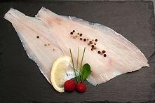 Raw Flounder fillet.jpg