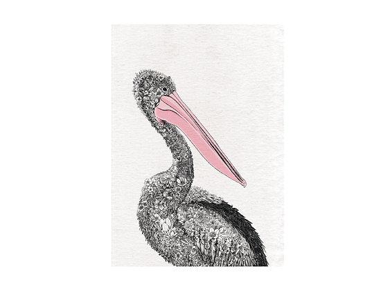 MW Marini Ferlazzo Birds Tea Towels 50x70cm Pelican