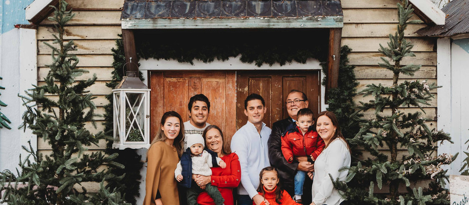 The Snellings Holiday Pictures at The Old Lucketts Store, Leesburg | NOVA Family Photographers