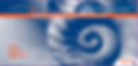 PrimaPro Blue Armor Powder-Free Examination Glove Box 260 Series