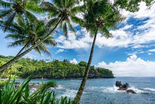 Rocky Shores of Papaikou