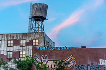 The Dog and the Watertower