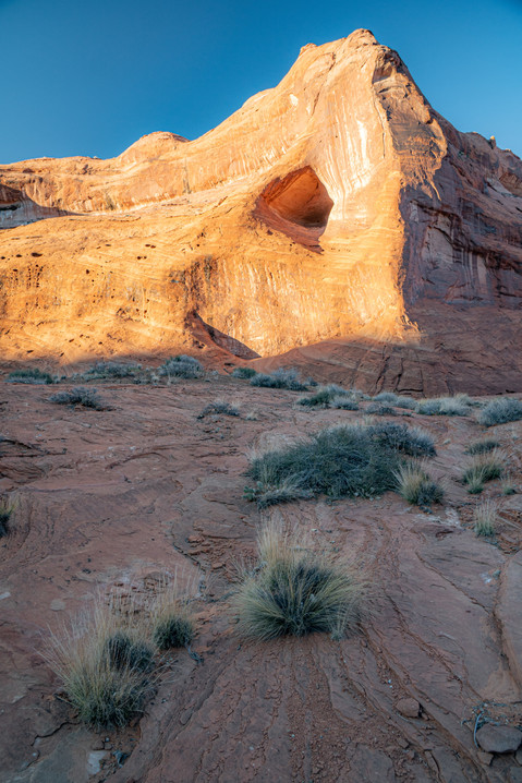 Last Light in Coyote Gulch
