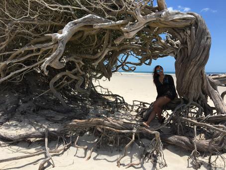 Jericoacoara: O paraíso guardado no Ceará