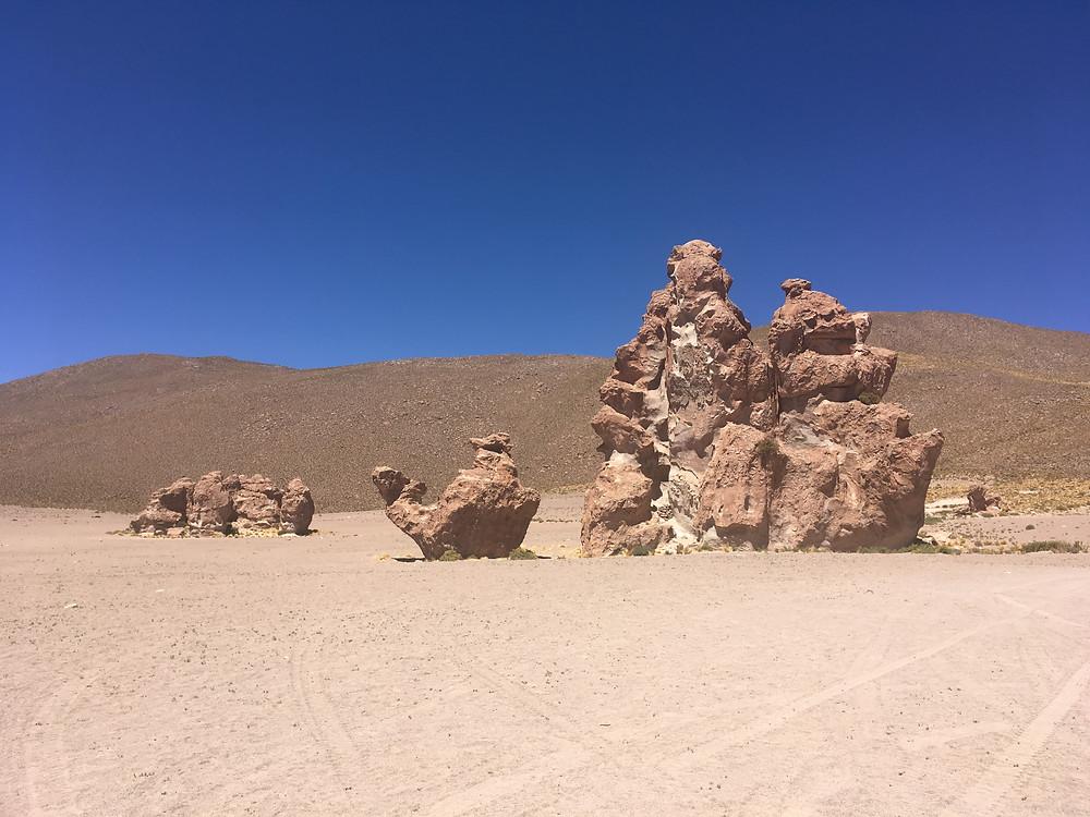 Camelos - Deserto do Atacama - viaje com pouco