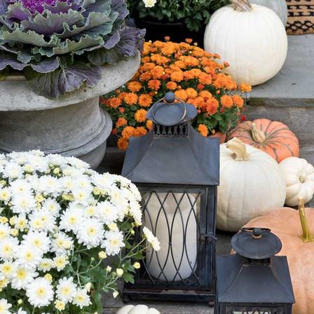 fall porch 16_edited.jpg