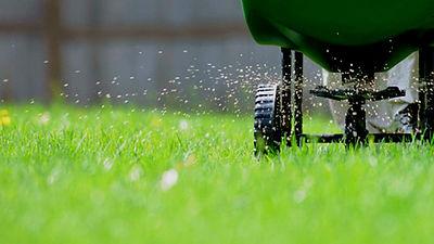 Fertilizing Lawn-darker.jpg