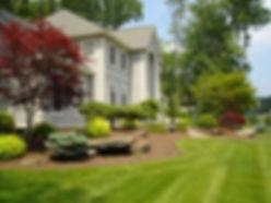 landscape design 3.jpg