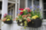 Spring Container Garden 1.png