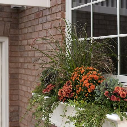 fall planter box 2.jpg