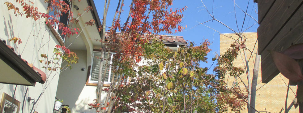 森のアトリエガーデン秋