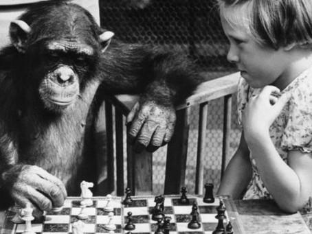 De la inteligencia y otros mitos
