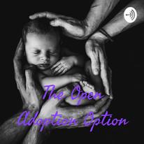 The Open Adoption Option