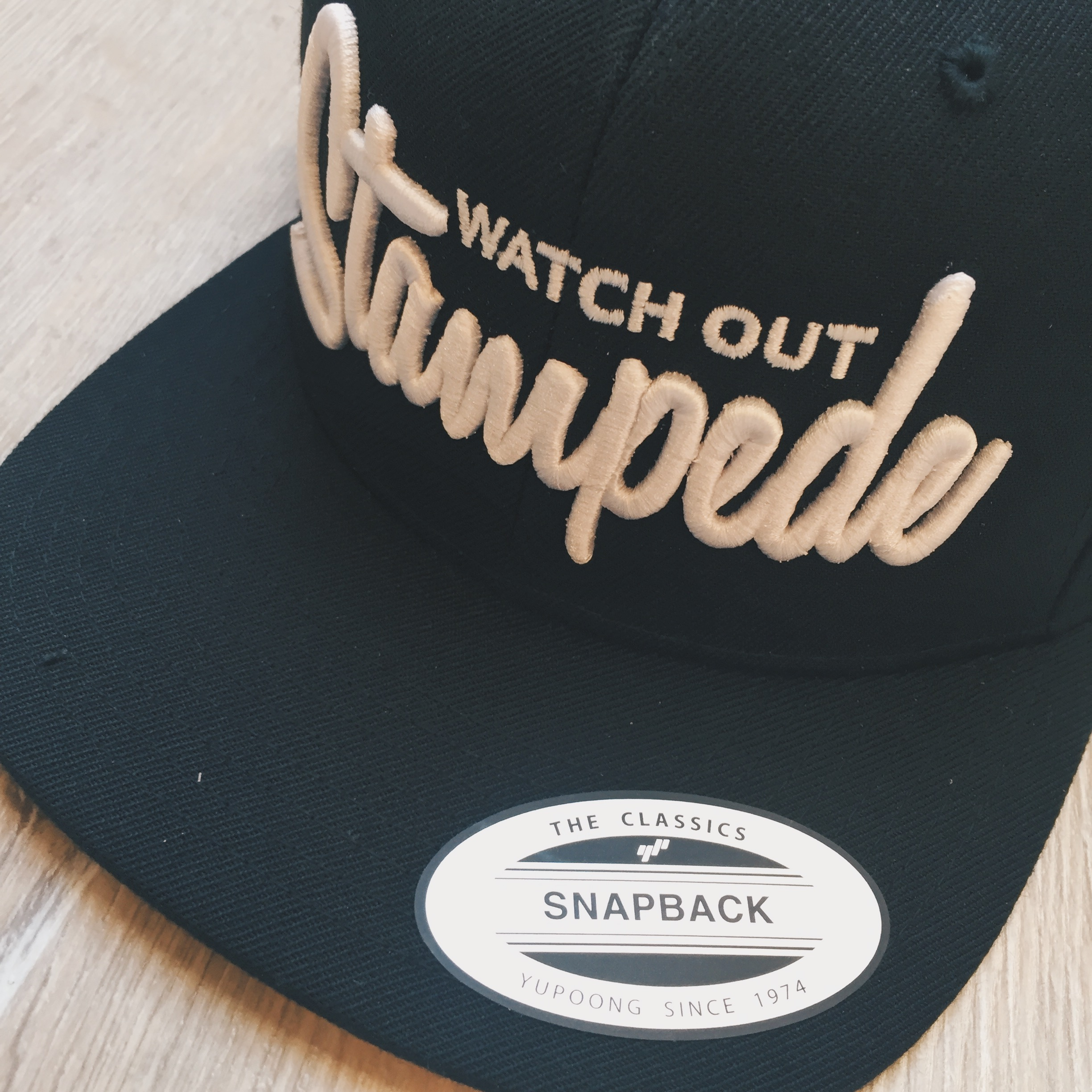 Watch out Stempede Snapback