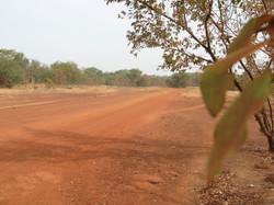どこまでも続きそうな赤い土