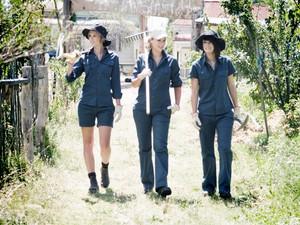Orchard walking.jpeg