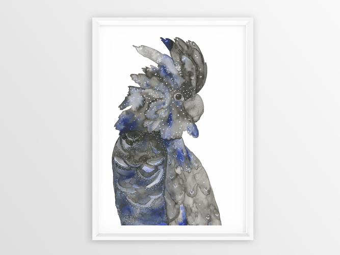 Black_Blue_cockatoo_White_Poster Frame M
