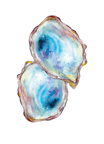 oyster shells-01.png